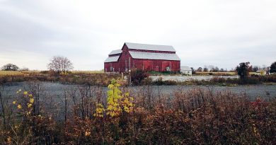 A photo of the Bradley Craig barn.