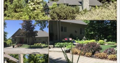 Clockwise from bottom: side garden bed, front of house, view from the road and front entrance with planter.