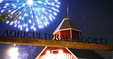 A photo of fireworks over the Carp Fair.