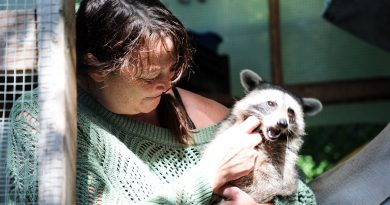 A photo of Lynne Rowe with a racoon.