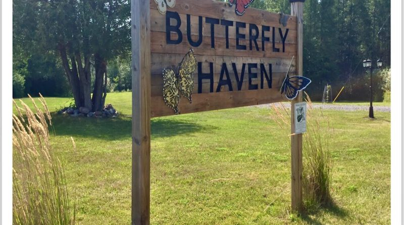 A photo of the sign Butterfly Haven.